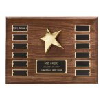 Perpetual Star Plaque Achievement Awards